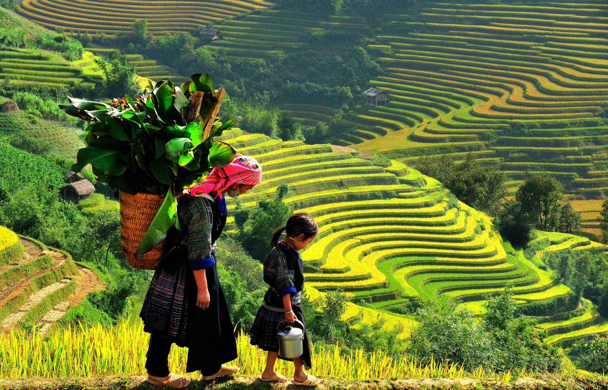 Hà Nội - Yên Tử - Hạ Long - Sapa