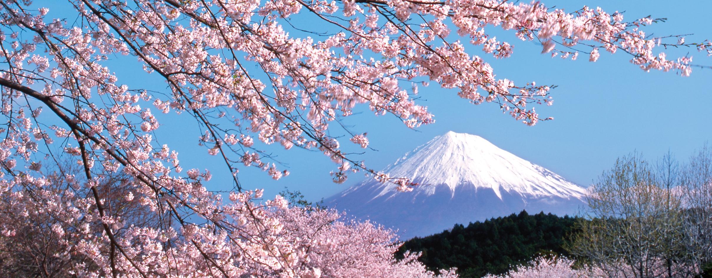 TOUR : CUNG ĐƯỜNG VÀNG OSAKA – NAGOYA – KYOTO – KOBE – TOKYO