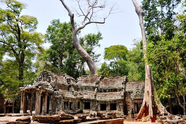 CAMBODIA - SIEM REAP - PHNOMPENH ( TẾT AL 2018)