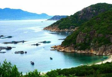 HO CHI MINH - CON DAO