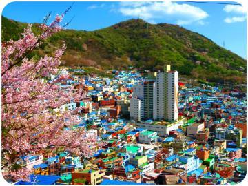 KOREA: SEOUL - JEJU - NAMI