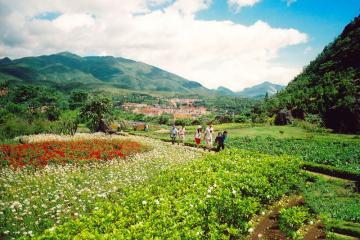 EXPLORE THE NORTHWEST OF VIET NAM